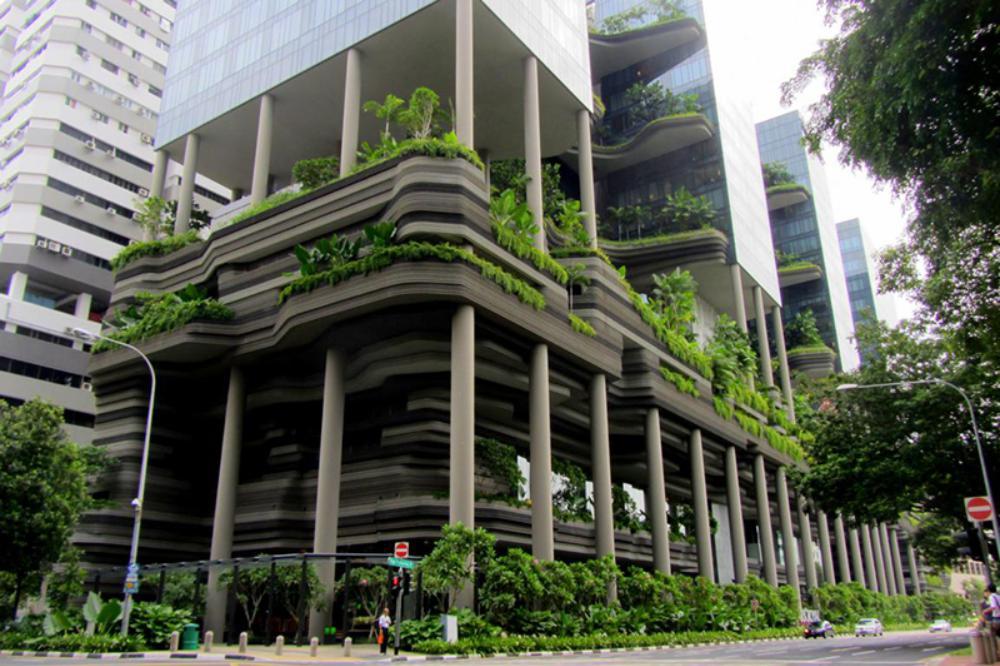 Thiết kế khách sạn với nhiều cây xanh